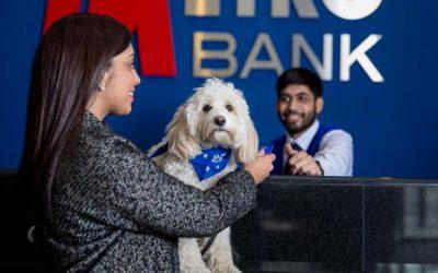 Metro Bank – an example to follow